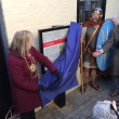 Scheregate board unveiled